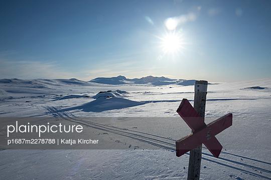 Loipe in der Wildnis - p1687m2278788 von Katja Kircher
