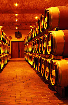 Wine cellar - p2681428 by Oliver Rüther