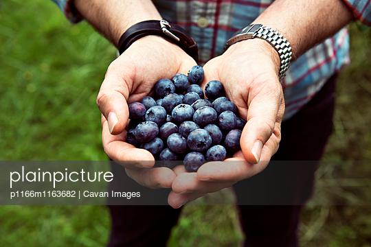 p1166m1163682 von Cavan Images