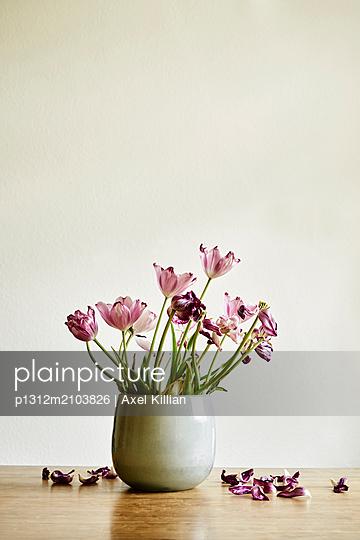 Bouquet of tulips - p1312m2103826 by Axel Killian