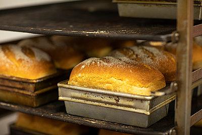 Loaves of freshly baked bread cool in a rack - p1166m2095589 by Cavan Images