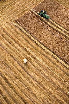 Feld, Hessen - p718m1223187 von Arne Landwehr