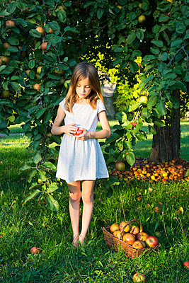Little girl standing barefoot on a meadow with picked apple in her hands - p300m2070289 von Larissa Veronesi