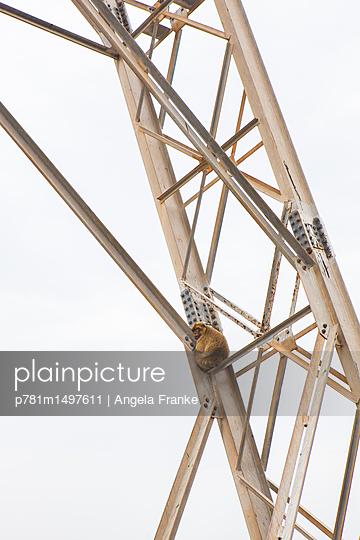 Sitzplatz - p781m1497611 von Angela Franke