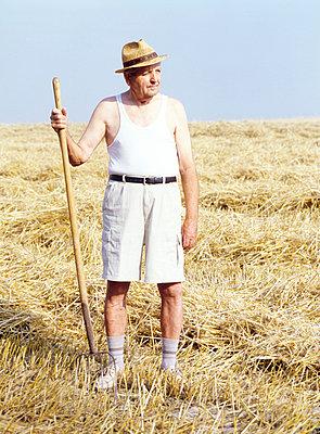 Ein Bauer im Kornfeld - p3290045 von Alexandra Lechner