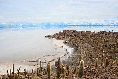 Bolivian salt desert - p1408m1465076 by Guy Nesher