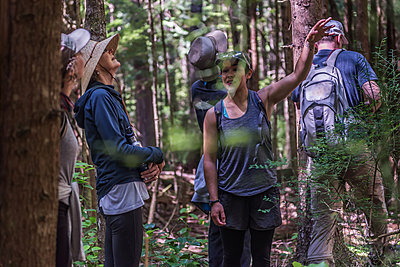 Friends hiking in forest, Johnstone Strait, Telegraph Cove, Canada - p429m2036633 by Alex Eggermont