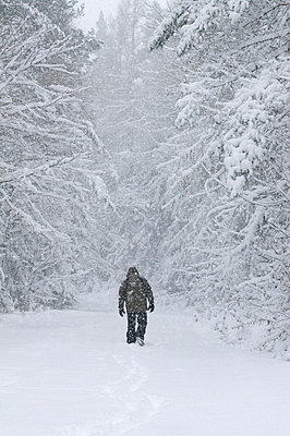 Snow - p992m777243 by Carmen Spitznagel