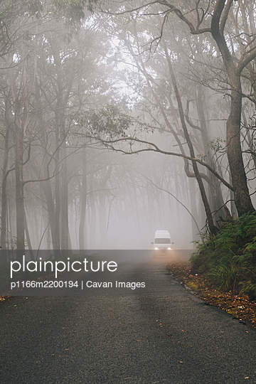 Campervan driving through lush forest on a misty day at the Grampians National Park, Victoria, Australia. - p1166m2200194 by Cavan Images