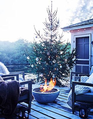 Christmas - p1397m2054693 by David Prince