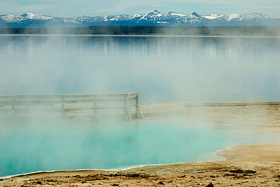 Hot springs in Yellowstone - p3950098 by John Weber
