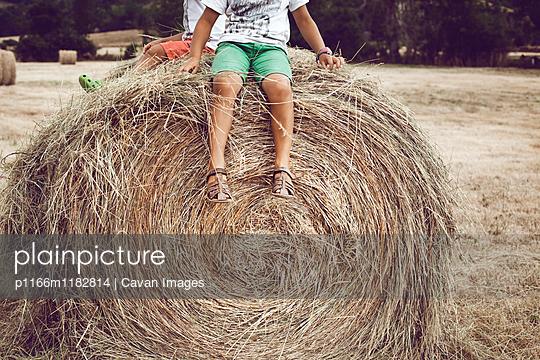 p1166m1182814 von Cavan Images