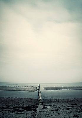 Buhne an der Ostsee - p992m1016123 von Carmen Spitznagel