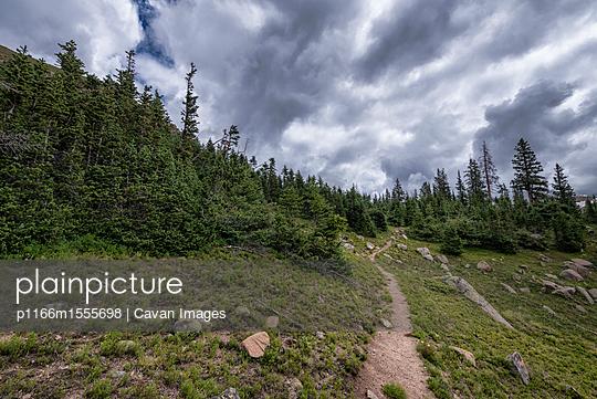 p1166m1555698 von Cavan Images