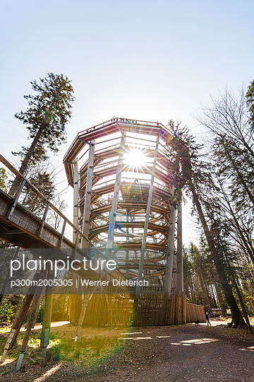 Germany, Bad Wildbad, Black Forest, Canopy Walk Black Forest against the sun - p300m2005305 von Werner Dieterich