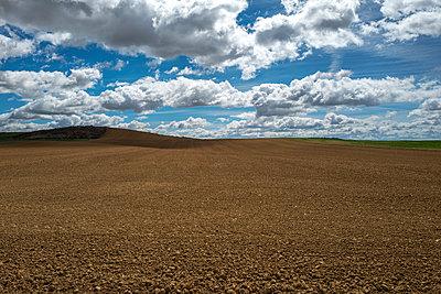 Ackerland und Wolkenlandschaft - p1165m1441843 von Pierro Luca