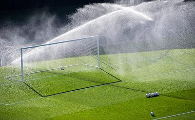 Sprinklers watering grass on soccer field - p1166m2025176 by Cavan Images