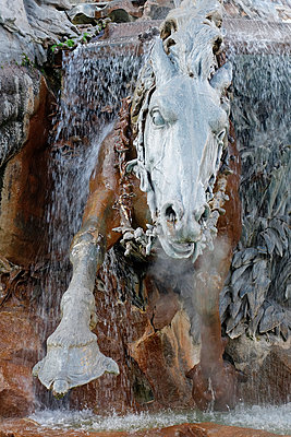 Galoppierendes Pferd - p1189m1067904 von Adnan Arnaout