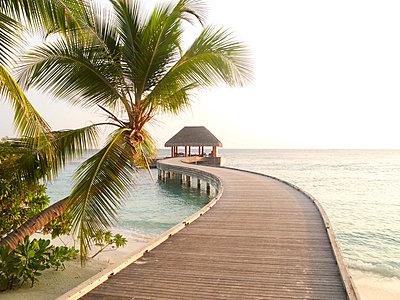 Malediven - p887m778330 von Christian Kuhn