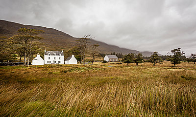 Farm in Scotland - p1234m1044586 by mathias janke