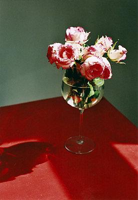 Bunch of roses in a wine glass - p1648m2228485 by KOLETZKI
