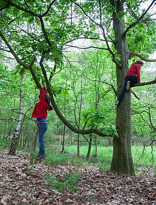 Two boys climb trees - p1231m1138070 by Iris Loonen