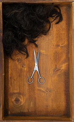 Cutted hair - p1657m2272061 by Kornelia Rumberg
