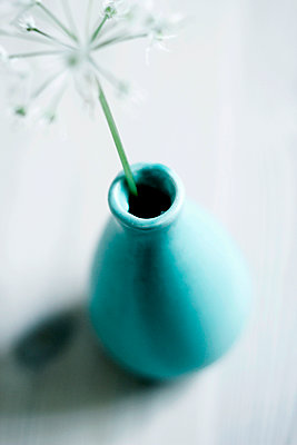 Bärlauch in blauer Vase - p879m1087290 von nico