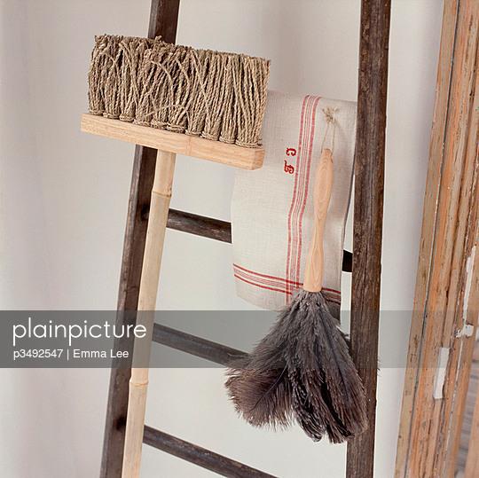 Bristles - p3492547 by Emma Lee