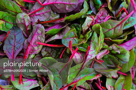 p378m2062028 von Simon Wilder