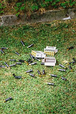 Blank cartridges - p1085m2260249 by David Carreno Hansen