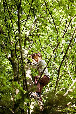 Junge beim Klettern im Baum - p1195m1138124 von Kathrin Brunnhofer
