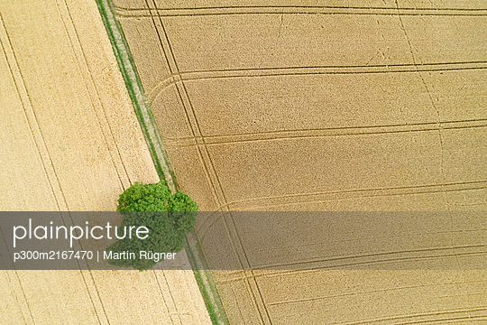 Germany, Baden-Wurttemberg, Drone view of vast countryside fields in summer - p300m2167470 by Martin Rügner