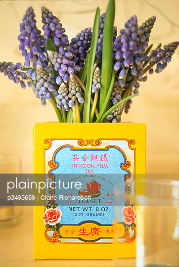 Grape hyacinths in a Chinese tea caddy - p3493659 by Claire Richardson
