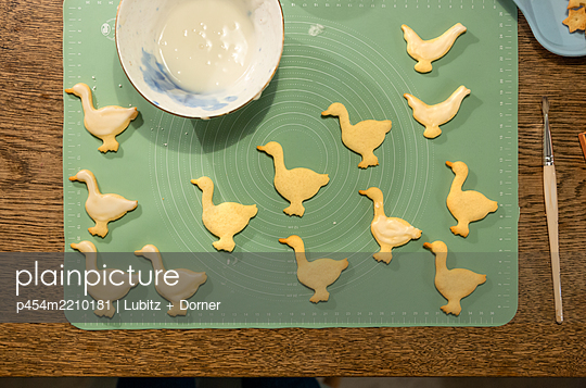 Gaggle of geese and two chicken - p454m2210181 by Lubitz + Dorner
