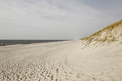 Beach - p248m952348 by BY