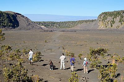 Im Kilauea Iki Krater, Volcanoes-Nationalpark, Hawaii - p1196m1000673 von Biederbick & Rumpf