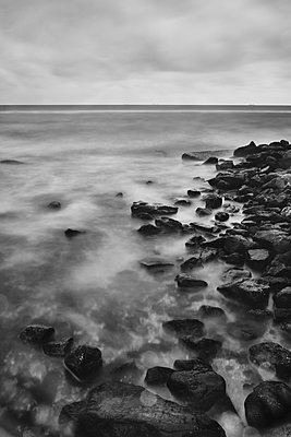 Wooden posts as breakwater at the seaside - p1561m2150185 by Andrey Cherlat
