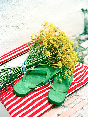 Wild fennel, Foeniculum vulgare and flipflops on red and white striped fabric, Spain - p349m2167744 by Polly Wreford