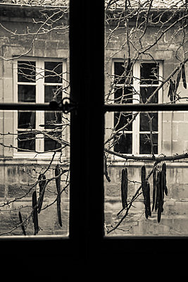 Blick durch ein Fenster, Arles - p1170m967820 von Bjanka Kadic