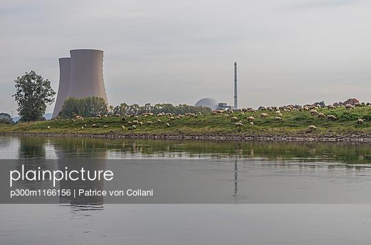 p300m1166156 von Patrice von Collani