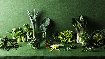 Assorted green vegetables on green table - p301m844105f by Larry Washburn