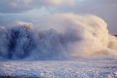 Stormy beach in winter - p719m1123220 by Rudi Sebastian