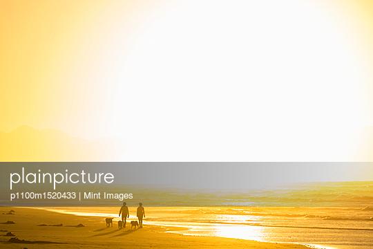 p1100m1520433 von Mint Images