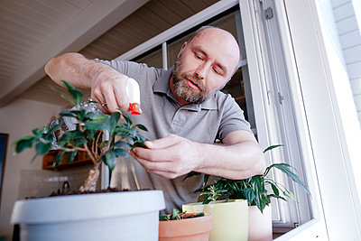 Mature man spraying water on potted plant in house - p300m2275628 by Katharina Mikhrin