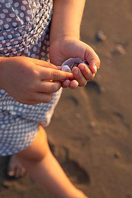 Collecting seashells - p454m2176610 by Lubitz + Dorner