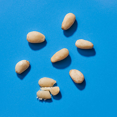 Some shelled pine nuts on a blue background - p1423m2215984 by JUAN MOYANO
