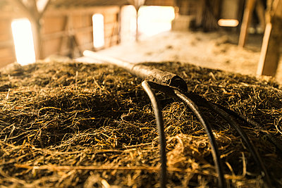 Dung fork lying on bale of straws in traditional farm barn - p300m2081279 by Steve Brookland