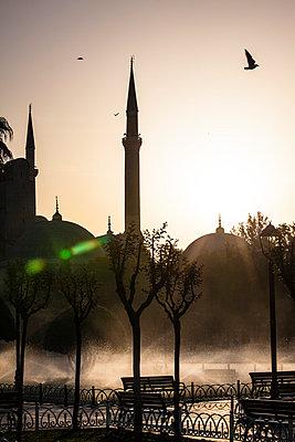 Istanbul - p488m800550 by Bias