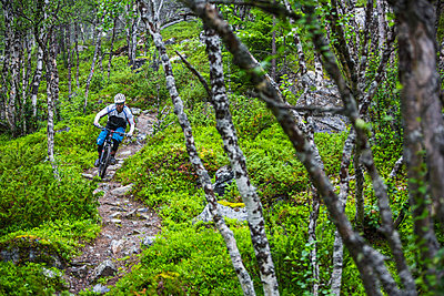 Mountain biker on a rocky section of the trail in Valadalen, Sweden. - p343m1090338 by Elias Kunosson